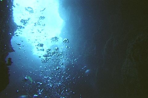 Mmm, ocean water